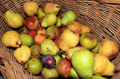 fruit-pears